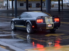 Mustang Shelby photo #33585