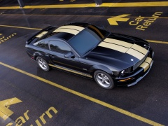 Mustang Shelby photo #33586