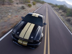 Mustang Shelby photo #33587