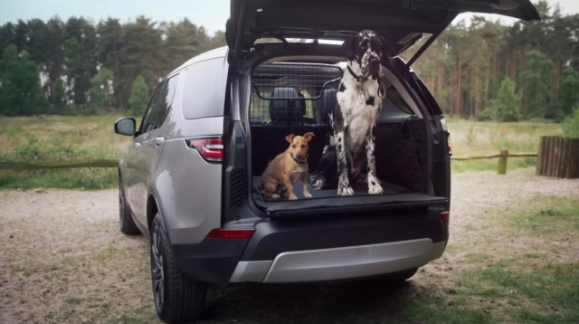 Dog Shower: Land Rover takes care of smaller brothers