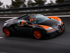 Veyron Grand Sport Vitesse WRC photo #140264