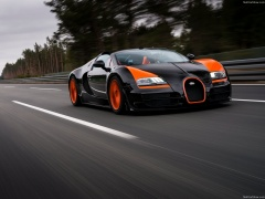Veyron Grand Sport Vitesse WRC photo #140265