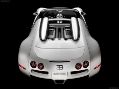 Veyron Grand Sport photo #57200