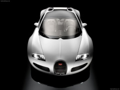 Veyron Grand Sport photo #57201