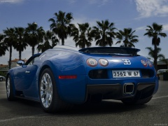 Veyron Grand Sport photo #64984