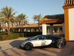 Veyron Super Sport photo #77553
