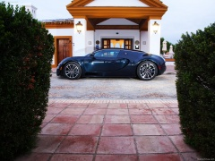 Veyron Super Sport photo #77554