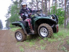 yamaha grizzly pic #39302