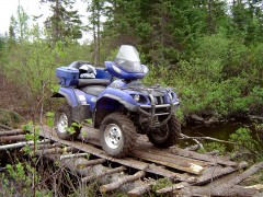 yamaha grizzly pic #39304