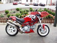 ducati monster s2r 1000 pic #30237