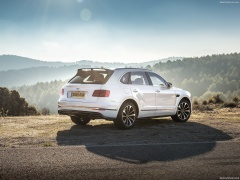 bentley bentayga pic #156452