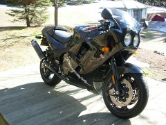 Daytona 1200 photo #105539