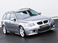 hamann bmw 5 series e61 touring pic #30544