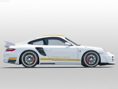 Porsche 911 Turbo Stallion photo #55809