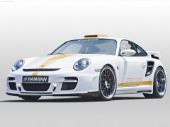 Porsche 911 Turbo Stallion photo #55811