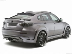 BMW X6 Tycoon Evo M photo #79310