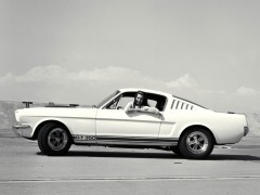 shelby super cars mustang gt350 pic #1231