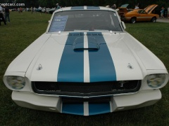 shelby super cars mustang gt350 pic #25341