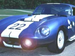 shelby super cars cobra pic #25345