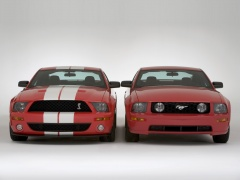 shelby super cars cobra gt500 pic #29044