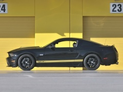 shelby super cars cobra gt500 pic #96759