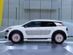 C4 Cactus Airflow 2L photo #129223