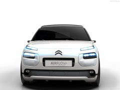 C4 Cactus Airflow 2L photo #129227