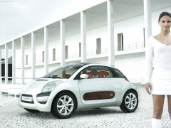 citroen c-airplay pic #29984