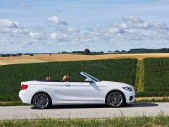 bmw 2-series convertible pic #180481