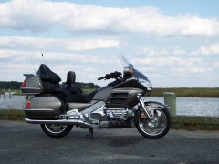 Goldwing photo #36471