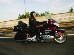 Goldwing photo #58094