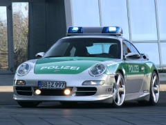 911 Carrera Police Car photo #30021