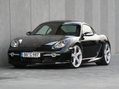 Porsche Cayman S photo #34279