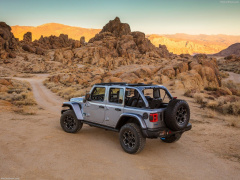 Wrangler Rubicon photo #197873