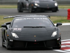 Gallardo LP560-4 Super Trofeo photo #71391