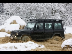 mercedes-benz g-class edition30 pic #61511