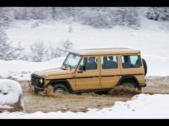 mercedes-benz g-class edition30 pic #61512