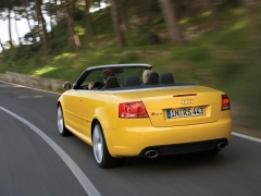 RS4 Cabriolet photo #44719