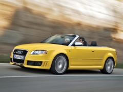 RS4 Cabriolet photo #44721