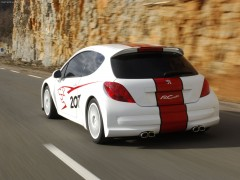 peugeot 207 rcup pic #31997