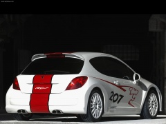 peugeot 207 rcup pic #31998