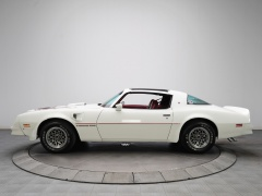 Firebird photo #91670