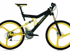 Bike FS Evolution photo #106414