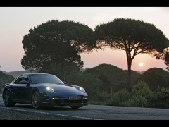 porsche 911 turbo (996) pic #44596