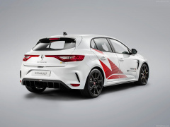 Megane RS Trophy photo #195930