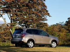 Forester photo #145063