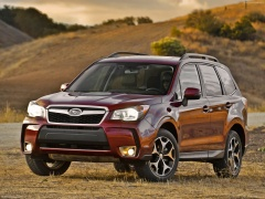 Forester photo #97593