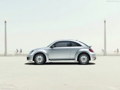 New Beetle photo #100478