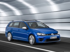 Golf R Variant photo #139827