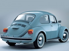 Beetle photo #17902